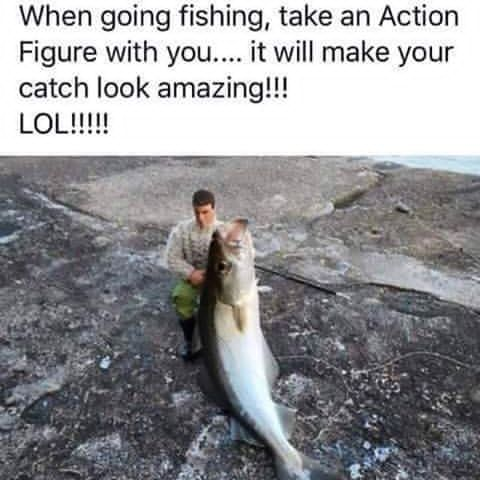 When you go fishing, take an Action Figure with you.  It will make your catch look amazing!  Fishing Meme.