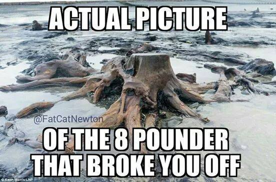 Actual image of the the eight pounder that broke you off.  Funny fishing meme.